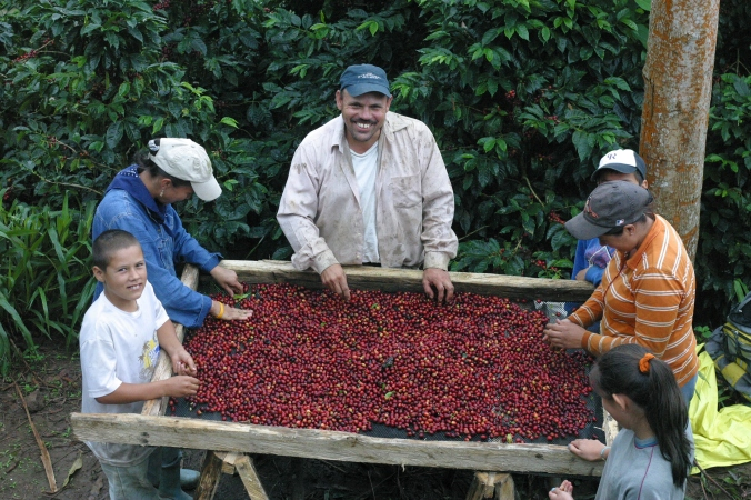 Donald and his family hand sorting cherries
