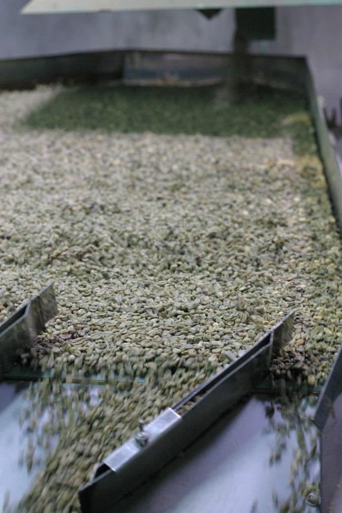Shake sorting green beans