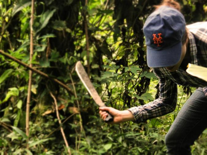 El machetazo. Rachel hacks away at the jungle of Federico's finca in the mangroves to clear space for coffee seedlings.