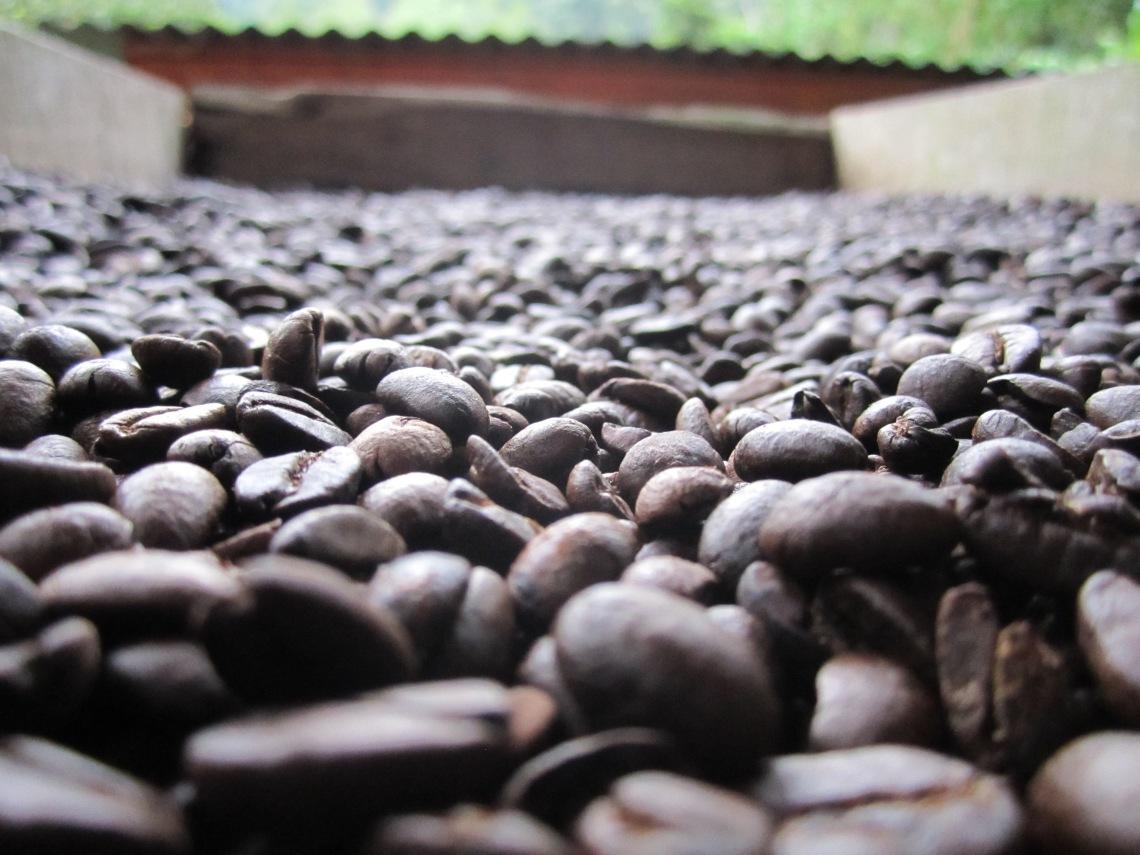 Bob's coffee. 100% artisan roasted, 100% Costa Rican