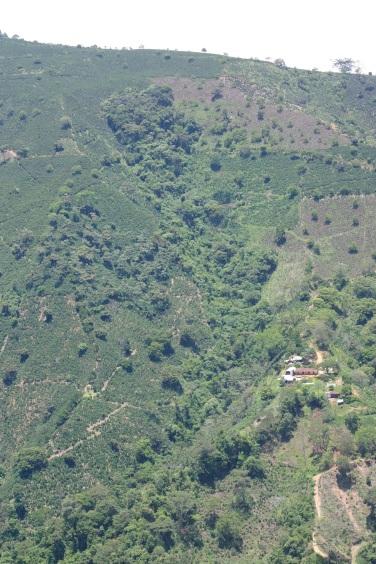 Municipio Ciudad Bolivar, Antioquia