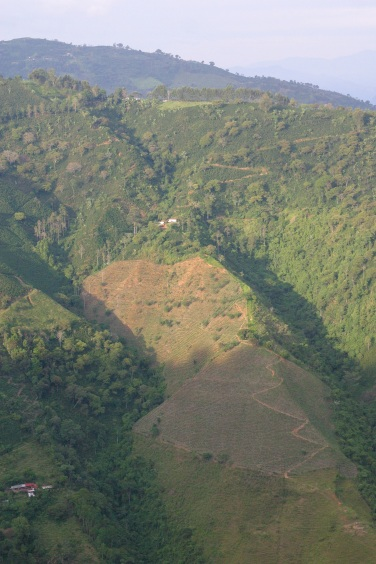 Serpentine switchbacks in Municipio Ciudad Bolivar, Antioquia