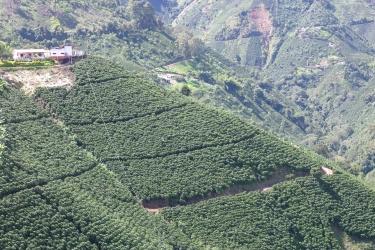 Muicipio Ciudad Bolivar, Antioquia