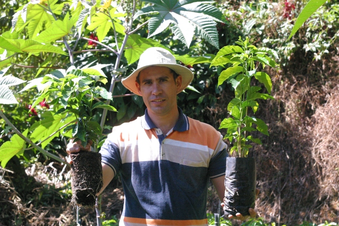 Esteban with seedlings in hand at La Candelilla in San Marcos, Costa Rica