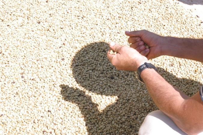 Patio coffee in Esteban's hands at La Candelilla