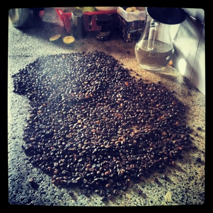 Cooling roasted coffee on the stone countertop