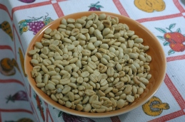 Dried coffee beans in parchment, waiting to be hulled