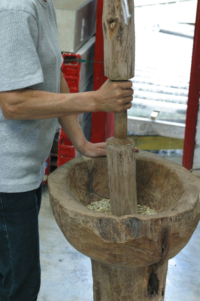 Hulling coffee by hand in a traditional carved wooden pilon