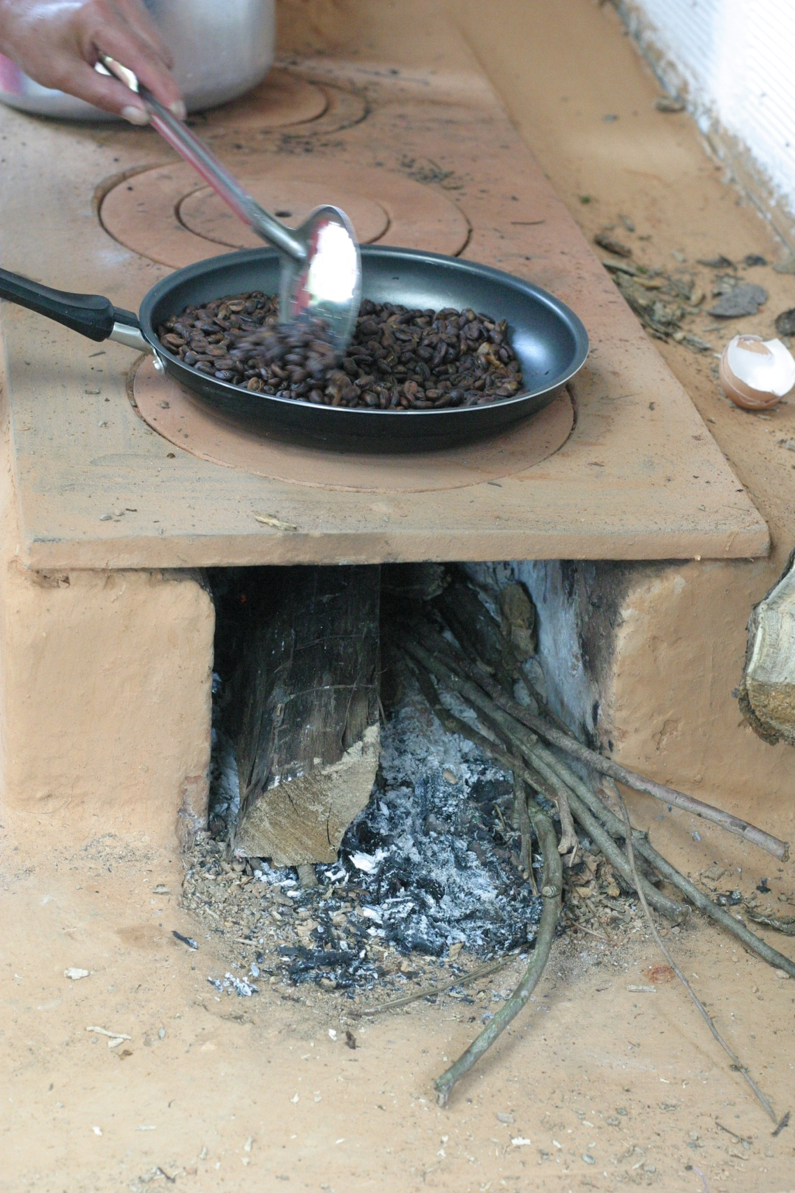 Fogon stove powered by coffee tree trunks
