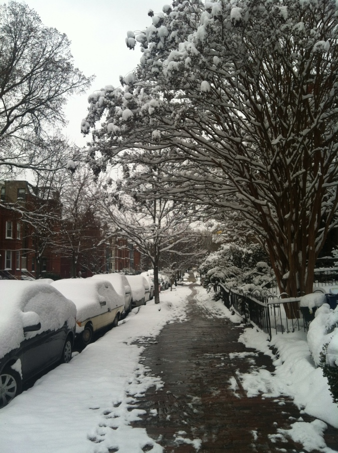 DC looking like NH