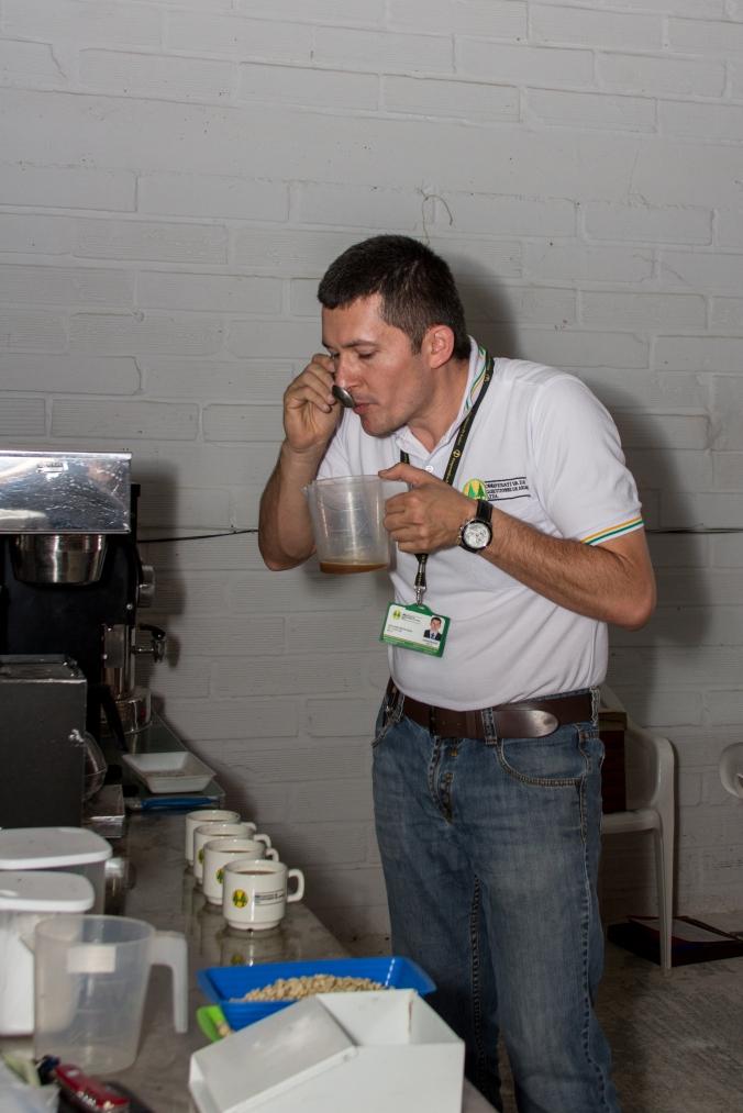 Leon, cupping coffee for the new prueba de taza
