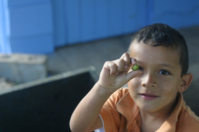 ...and their other son Alejandro. Busy scouring the beneficio for errant under ripe coffee cherries.
